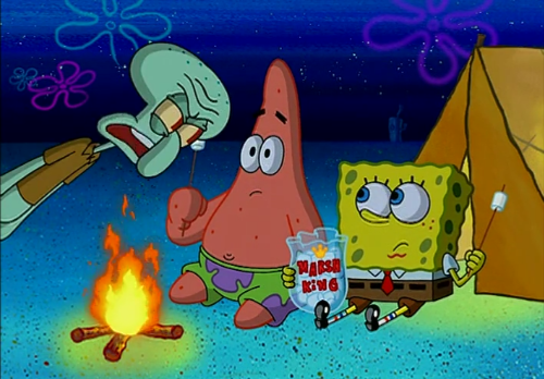 Sponge Camping 2