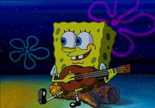 Sponge Camping 3