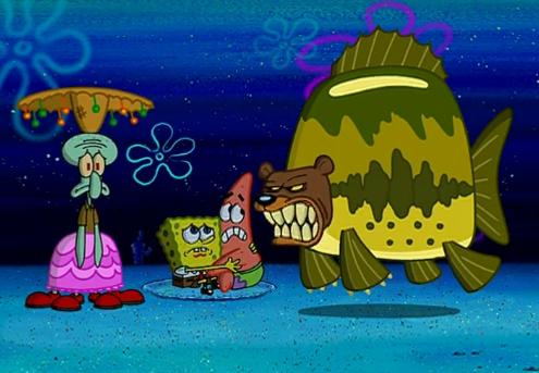 Sponge Camping 5